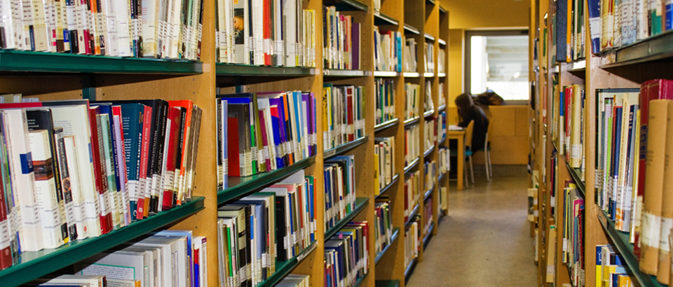 Biblioteca FdV