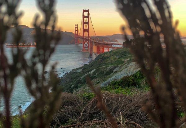 From Usa San Francisco