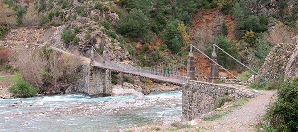 puente-janovas