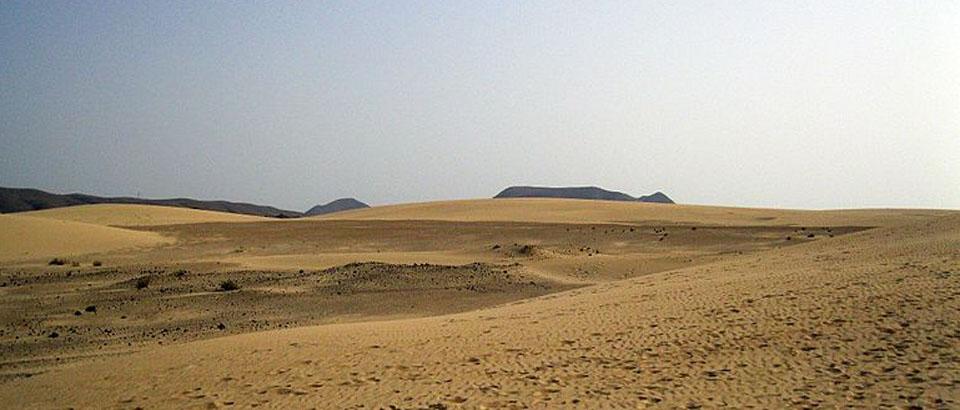 Desert amplio