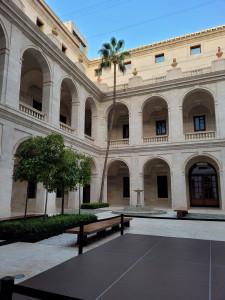 Museo de Málaga. Patio interior con palmera