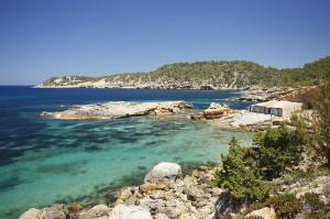 Ibiza euphoria - El limonero ibiza ...