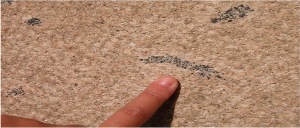 La Piedra Pajarilla