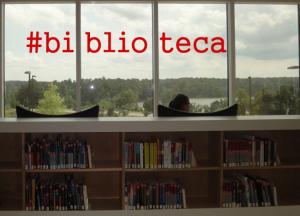 Cinco derechos de la biblioteca