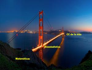 Puente entre CC de la Vida y Matemáticas: Bioestadístuca