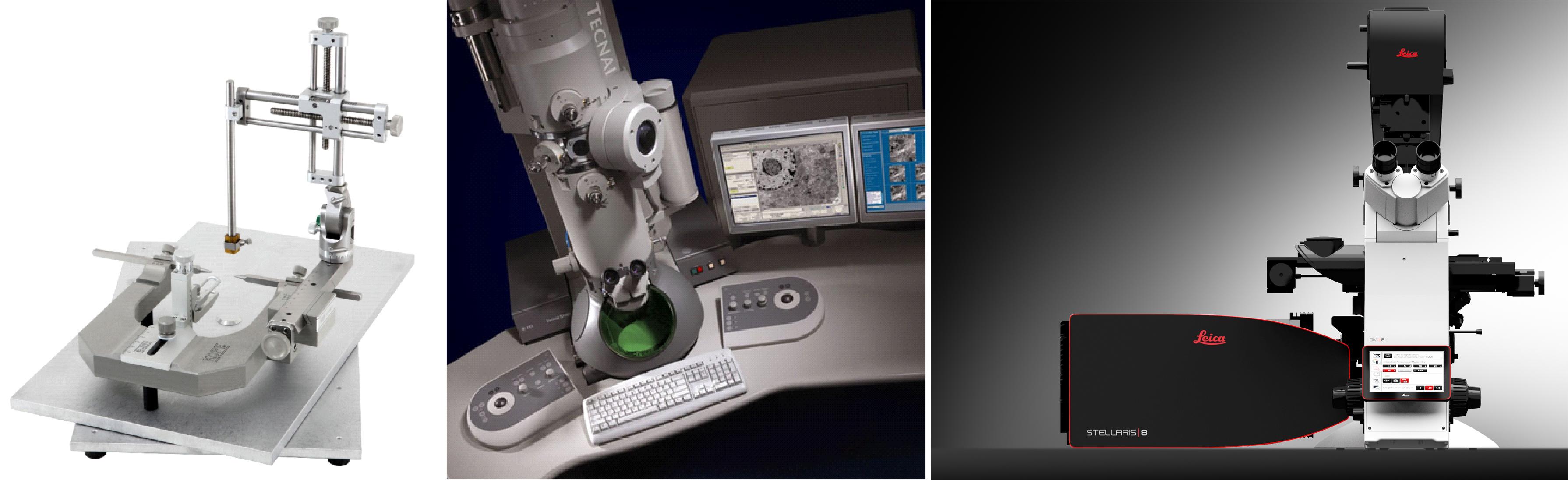 Análisis imágenes microscopia